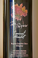 Bottle of Don Prospero Tannat Merlot Bodega Carlos Pizzorno Winery, Canelon Chico, Canelones, Uruguay, South America