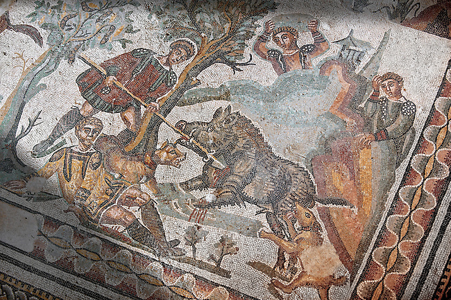 Wild Boar being hunted. Roman mosaic floor of the Room of The Small Hunt, no 25 - Roman mosaics at the Villa Romana del Casale ,  circa the first quarter of the 4th century AD. Sicily, Italy. A UNESCO World Heritage Site.