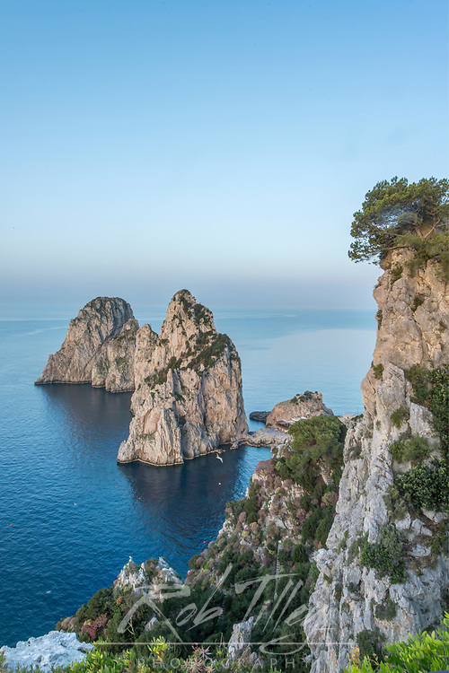 Europe, Italy, Isle of Capri, Sea Stacks on the Coast