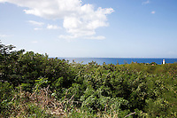 Foliage, the Caribbean Sea, and El Faro de Punta Higuero lighthouse, as seen from Route 413 in Rincón, Puerto Rico on 31st December 2011.