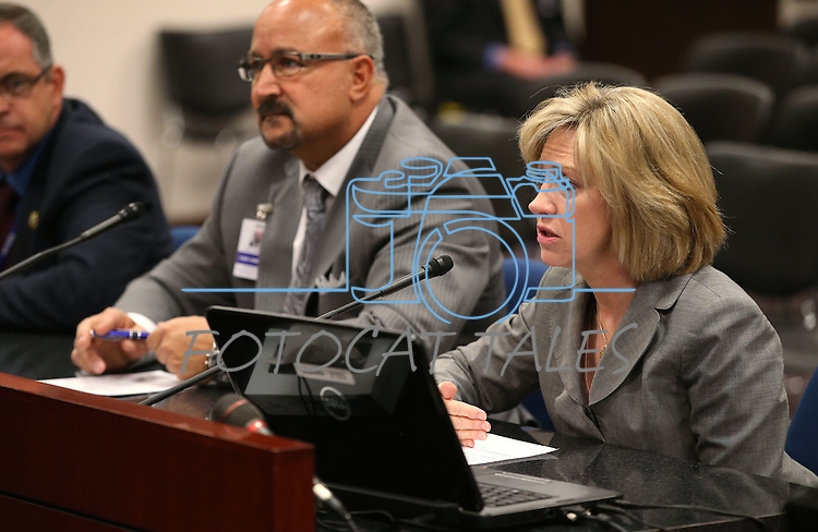Lobbyist Lisa Foster works in a committee hearing at the Legislative Building in Carson City, Nev., on Tuesday, May 5, 2015.<br /> Photo by Cathleen Allison