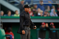 Umpire Rainiero Valero during a NY-Penn League game between the Auburn Doubledays and Batavia Muckdogs on June 14, 2019 at Dwyer Stadium in Batavia, New York.  Batavia defeated 2-0.  (Mike Janes/Four Seam Images)