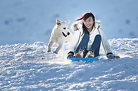 Pictured: A woman on a sledge is chased by her dog at Storey Arms in the Brecon Beacons, Wales, UK. Monday 11 December 2017<br /> Re: Freezing temperatures, snow and ice has affected parts of the UK.