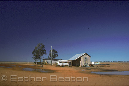 A lone house in Windorah, a town in the Channel Country of far west Queensland.