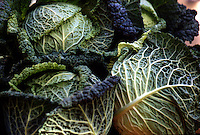 Detail of two cabbages in open-air market, Provence, France