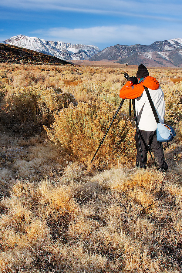 Photographer shooting Mount Wood and Parker Peak and desert sage brush, eastern Sierras, Mono Basin National Forest Scenic Area, California, USA
