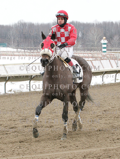 Aunt Ellipsis #2 with Luis Hiraldo riding won the $75,000 Donna Freyer Stakes at Parx Racing in Bensalem, Pennsylvania February 8, 2014.  Photo By Matthew Donohue / EQUI-PHOTO
