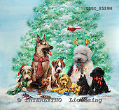 GIORDANO, CHRISTMAS ANIMALS, WEIHNACHTEN TIERE, NAVIDAD ANIMALES, paintings+++++,USGI2528M,#XA# dogs,puppies
