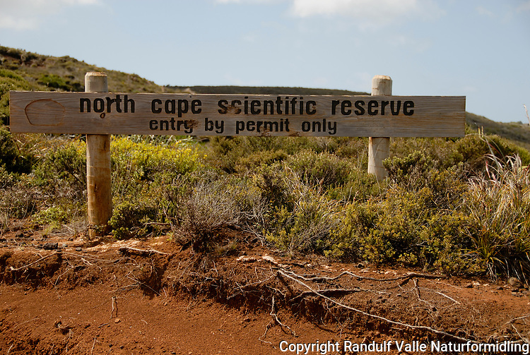 Skilt for North cape scientific reserve på New Zealand. ---- Sign for North cape scientific reserve at New Zealand.