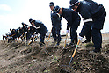 March 11, 2016, Tokyo, Japan - Police officers search for remains of missing tsunami victims on the area destroyed by the tsunami at Namie in Fukushima prefecture near the crippled TEPCO nuclear power plant on Friday, March 11, 2016 on the fifth anniversary of the Great East Japan Earthquake and Tsunami.  (Photo by Yoshio Tsunoda/AFLO)