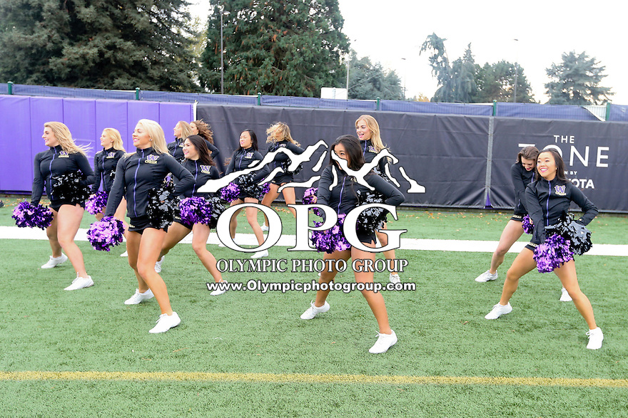 17 September 2016:   Washington cheerleaders entertained fans during the game.  Washington defeated Portland State 41-3 at the University of Washington in Seattle, WA.