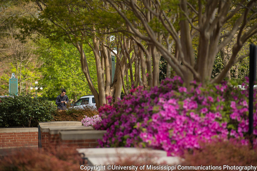 Colorful . Photo by Kevin Bain/University Communications Photography