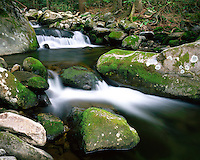 Moss-covered boulders and waterfall in Roaring Fork; Great Smoky Mountains National Park, TN