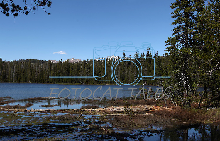 Chiquito Lake in the Sierra National Forest, near Oakhurst, Ca., on July 12, 2011..Photo by Cathleen Allison