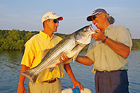 Guide congratulates angler on catching trophy striped bass in Lake Ouachita, Arkansas