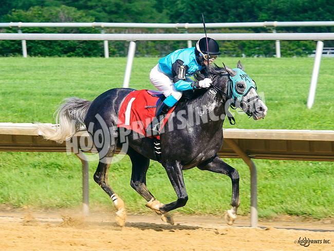 Lazur Hess winning at Delaware Park on 6/4/16