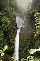 The La Paz Waterfall in the Braulio Carillo National Park, Costa Rica.