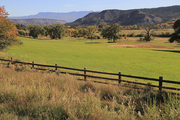 Pasture and wood fence in the Sneffels Range, near Telluride, Colorado, USA.