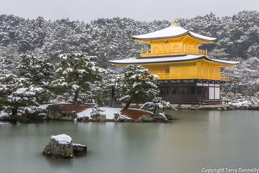 Kyoto City, Japan<br /> Kinkakau-ji Temple (Rokuan-ji), the Golden Pavilion in winter with frozen Mirror Pond and small islands, a World Cultural Heritage site