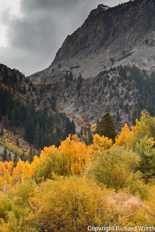 Fall colors climb away, up the valley, until they reach treeline.  Lundy Lake in the eastern Sierra Nevada.