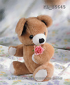 Interlitho, Alberto, CUTE ANIMALS, teddies, photos, teddy, pink rose(KL15645,#AC#)