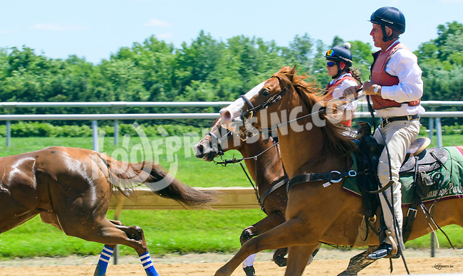 Pranzare running away at Delaware Park on 6/2417