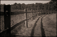 Split rail fence between prairie and grassland