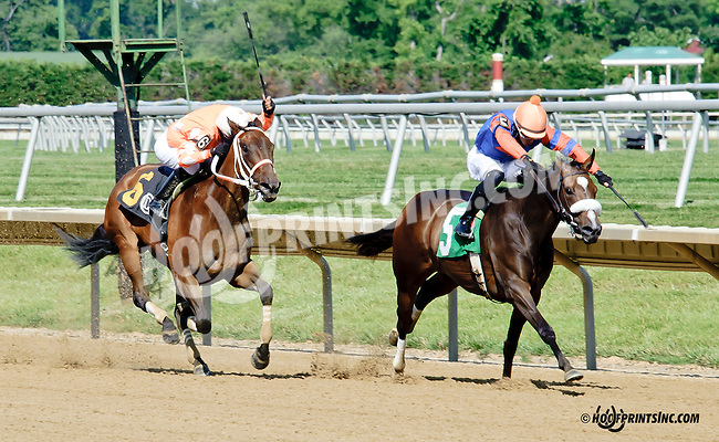 Who's In Town winning at Delaware Park racetrack on 6/28/14