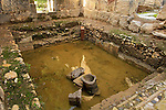 Israel, the Lepers pool at the ancient Roman baths in Hamat Gader