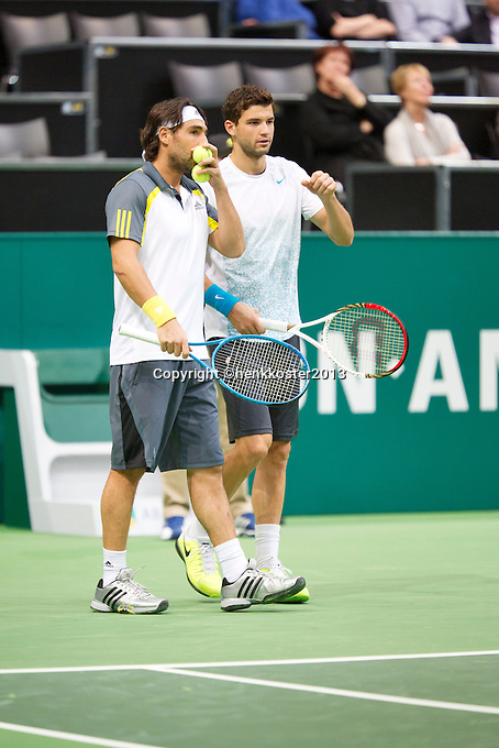 12-02-13, Tennis, Rotterdam, ABNAMROWTT, Marcos Baghdatis, Grigor Dimitrov