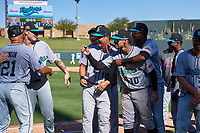 Manager Keith Johnson (21), Shane Baz (35), Luis Ramirez (19), Victor Victor Mesa (10), and Geraldo Perdomo (7), all of the Salt River Rafters, celebrate after winning the Arizona Fall League Championship Game against the Surprise Saguaros on October 26, 2019 at Salt River Fields at Talking Stick in Scottsdale, Arizona. The Rafters defeated the Saguaros 5-1. (Zachary Lucy/Four Seam Images)