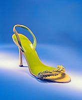 Elegant shoe<br />