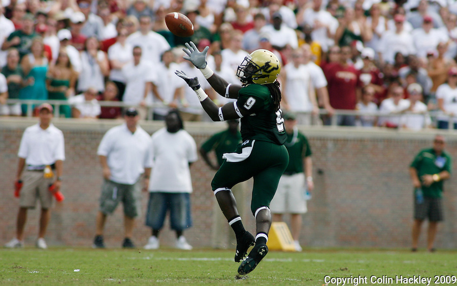 TALLAHASSEE, FL 9/26/09-FSU-USF FB09 CH30-South Florida's Theo Wilson is all alone as he catches a pass that he ran for 77 yards during second quarter action Saturday at Doak Campbell Stadium in Tallahassee. FSU allowed the Bulls 215 yards of passing...COLIN HACKLEY PHOTO