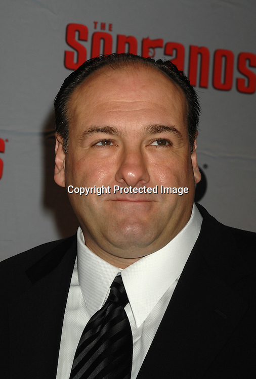 James Gandolfini ..arriving at The Sopranos World Premiere of two new episodes of the HBO original series on March 27, 2007 at..Radio City Music Hall in New York...Robin Platzer, Twin Images