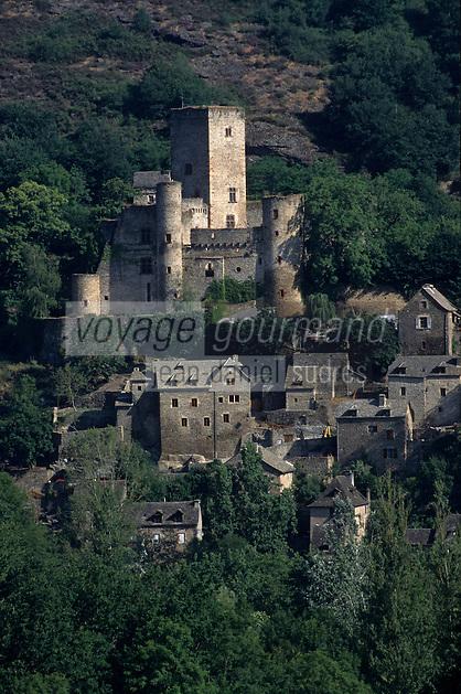 Europe/France/Midi-Pyrénées/12/Aveyron/Vallée de l'Aveyron/Belcastel : Le village et le château de Belcastel construit au XII° siècle sur un éperon rocheux. Il se présente sous la forme d'une enceinte polygonale flanquée de cinq tours rondes.