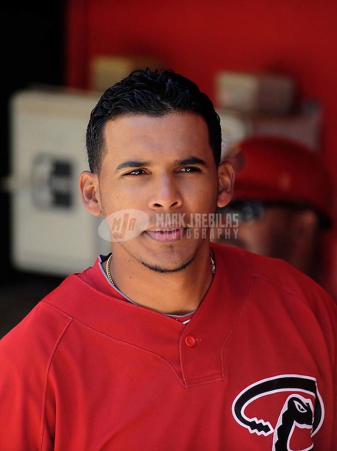 Apr. 3, 2010; Phoenix, AZ, USA; Arizona Diamondbacks pitcher Esmerling Vasquez against the Chicago Cubs at Chase Field. Mandatory Credit: Mark J. Rebilas-