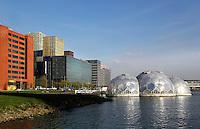 Rijnhaven in Rotterdam. De transparante bollen vormen een drijvend innovatieplatform.