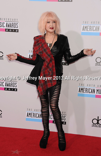 LOS ANGELES, CA - NOVEMBER 18: Cyndi Lauper attends the 40th Anniversary American Music Awards held at Nokia Theatre L.A. Live on November 18, 2012 in Los Angeles, California.