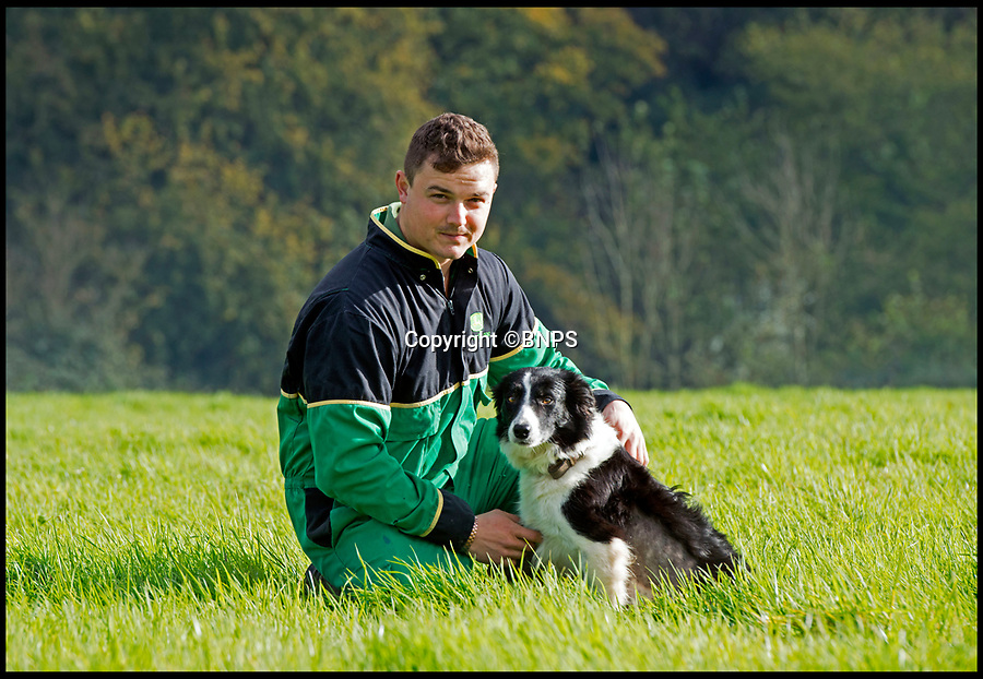 BNPS.co.uk (01202 558833)Pic: LeeMcLean/BNPS<br /> <br /> Farmer Josh Sibley (22) and his dog Winnie (3) at Stoke Water Farm.<br /> <br /> Winnie the wonder dog...<br /> <br /> A pregnant sheepdog had a miracle escape after she was run over by a 15-tonne tractor - and survived because she was pushed into the soft mud.<br /> <br /> Shepherd Josh Sibley feared the worst when Winnie, a Border Collie, chased a rabbit under the 2ft wide tyre of a forage harvester.<br /> <br /> Luckily, because the ground was so soft Winnie was pinned down into the mud rather than being crushed to death.