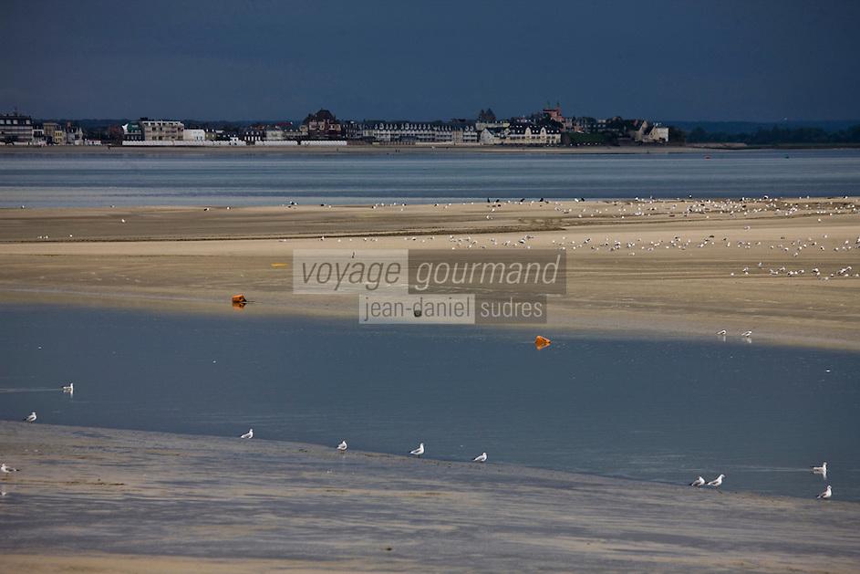 Europe/France/Picardie/80/Somme/Baie de Somme/ Le Hourdel: Paysages de la Baie de Somme, en fond Le Crotoy