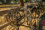 Confiscated bicycle and snares by anti-poaching team, Kafue National Park, Zambia