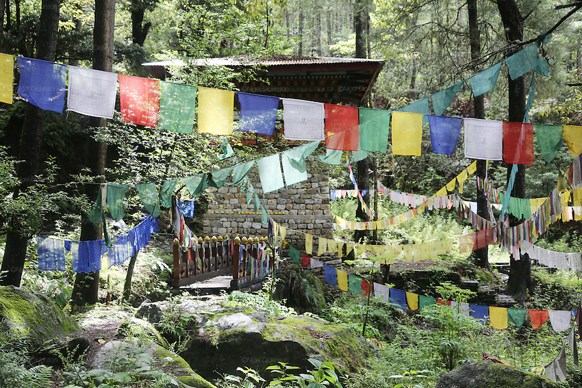Prayer flags adorn the forest near a buddhist stupor, on the way up to the Tiger's Nest Buddhist temple perched high up, and almost inaccessible except for a steep 3 hour climb, Paro, Bhutan..Bhutan the country that prides itself on the development of 'Gross National Happiness' rather than GNP. This attitude pervades education, government, proclamations by royalty and politicians alike, and in the daily life of Bhutanese people. Strong adherence and respect for a royal family and Buddhism, mean the people generally follow what they are told and taught. There are of course contradictions between the modern and tradional world more often seen in urban rather than rural contexts. Phallic images of huge penises adorn the traditional homes, surrounded by animal spirits; Gross National Penis. Slow development, and fending off the modern world, television only introduced ten years ago, the lack of intrusive tourism, as tourists need to pay a daily minimum entry of $250, ecotourism for the rich, leaves a relatively unworldly populace, but with very high literacy, good health service and payments to peasants to not kill wild animals, or misuse forest, enables sustainable development and protects the country's natural heritage. Whilst various hydro-electric schemes, cash crops including apples, pull in import revenue, and Bhutan is helped with aid from the international community. Its population is only a meagre 700,000. Indian and Nepalese workers carry out the menial road and construction work.