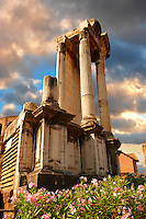 Temple of Vesta, The Forum Rome