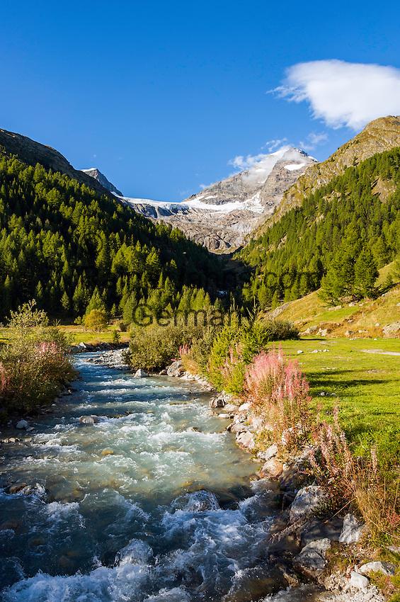 Switzerland, Canton Valais, Fafleralp im Loetschental: valley end of Loetschental with Bernese Alps | Schweiz, Kanton Wallis, Fafleralp im Loetschental: Talschluss des Loetschentals mit Gipfeln der Berner Alpen
