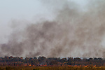 Burning savanna, Kafue National Park, Zambia