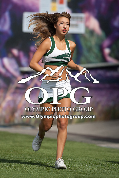 Sept 15, 2012:  Portland State cheerleaders entertained their fans during the game against Washington..  Washington defeated Portland State 52-13 at CenturyLink Field in Seattle, Washington...
