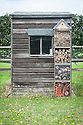 An insect hotel build on to the side of a small garden shed