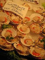 Scallops, Rialto Fish Market, Venice