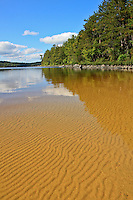 """Sand Ripples""<br />