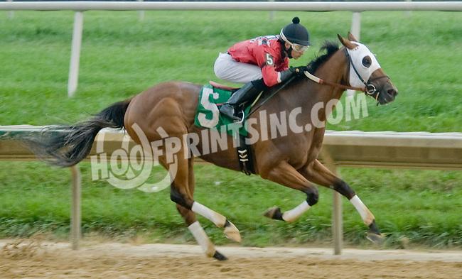 Shamroge winning. at Delaware Park on 9/6/12